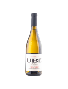 UBE Miraflores 2020